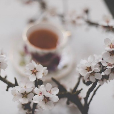 Sensis #spring #love #sensis